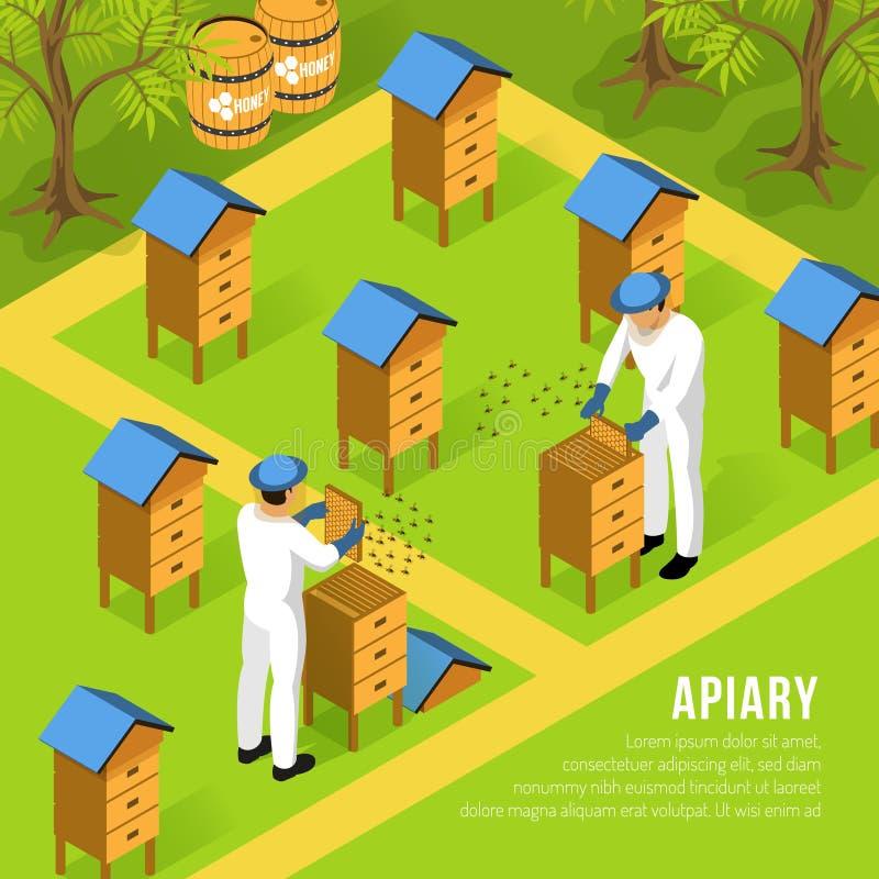 Beekeepers At Apiary Isometric Illustration stock illustration