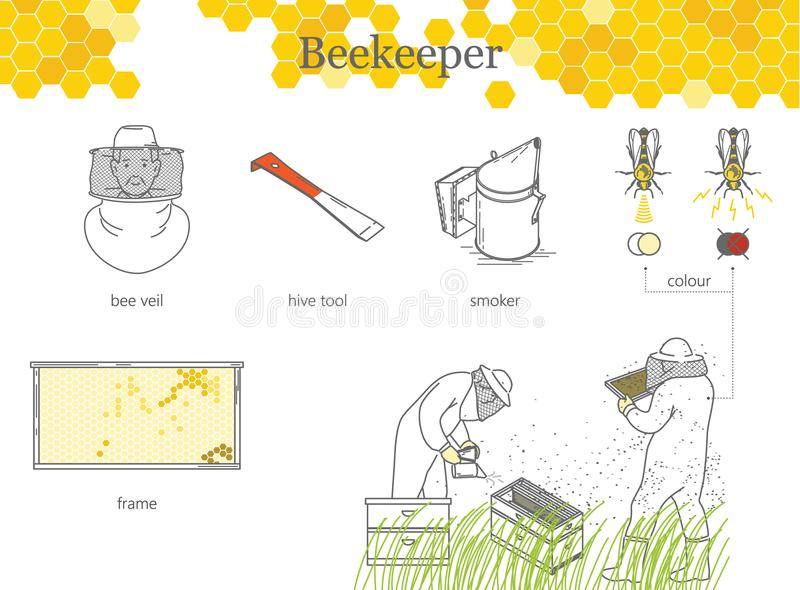 Beekeepers, a man and a woman in protective suits. Infographics of beekeeping. stock illustration