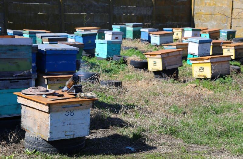 beekeeping zdjęcia stock