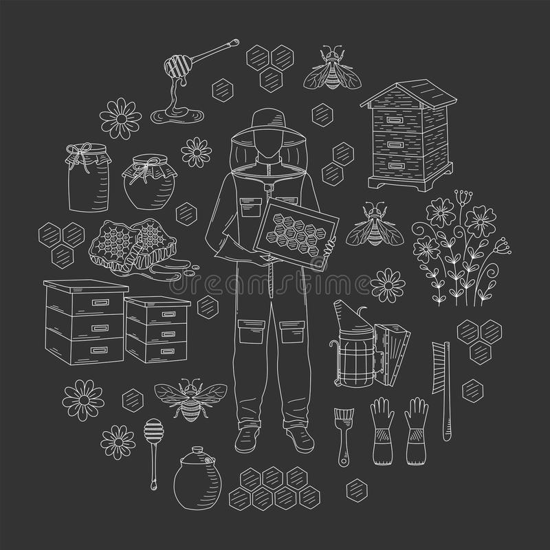 Beekeeping honey collection vector stock illustration