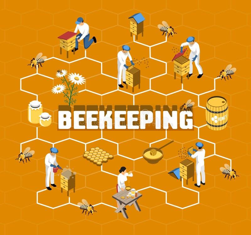 Beekeeping Isometric Flowchart ilustracji