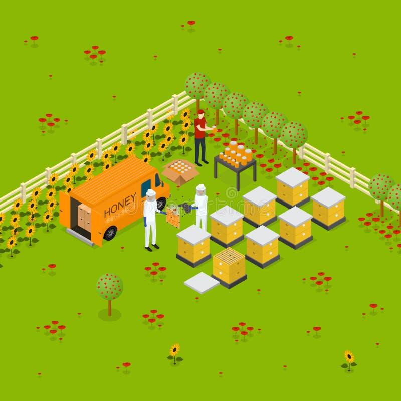 Beekeeping pasieki gospodarstwa rolnego pojęcia Isometric widok wektor royalty ilustracja