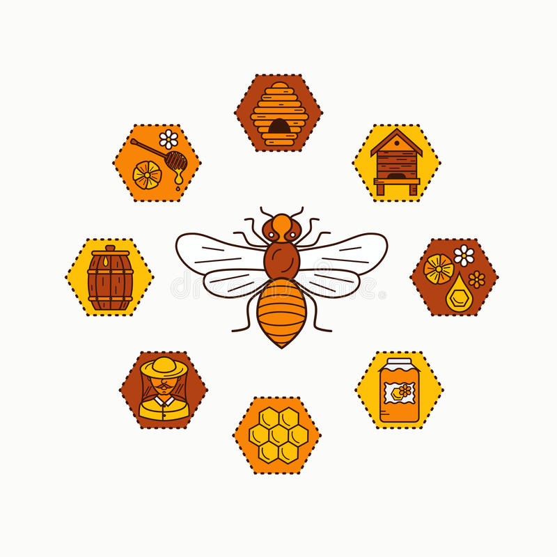 Beekeeping product icon set. Beekeeping vector symbols. Bee, honey, bee house, honeycomb, apiary, beehive, flower. Outline style beekeeping product icons stock illustration