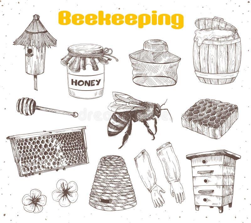 Beekeping schizza la raccolta royalty illustrazione gratis