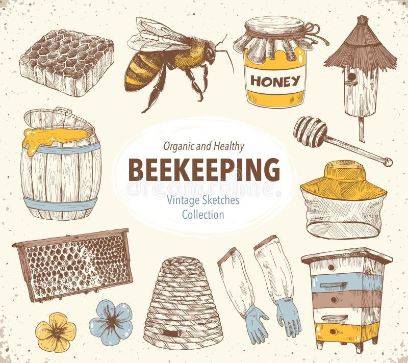 Beekeping skissar samlingen royaltyfri illustrationer