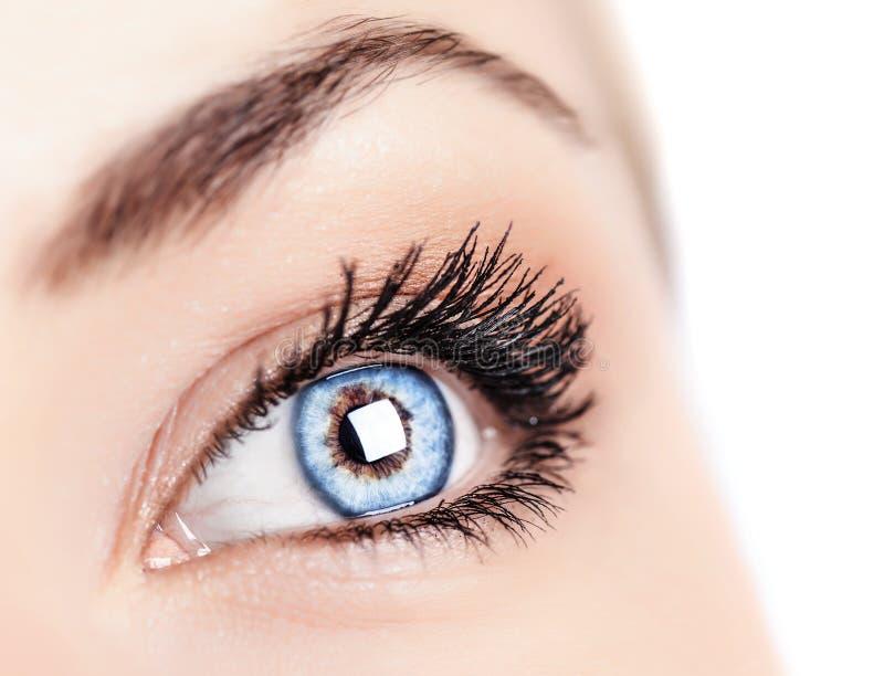 Vrouwelijk blauw oog royalty-vrije stock afbeelding