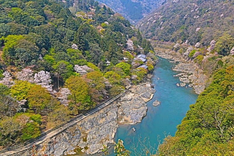 Beeld van Arashiyama van de Lente stock foto's