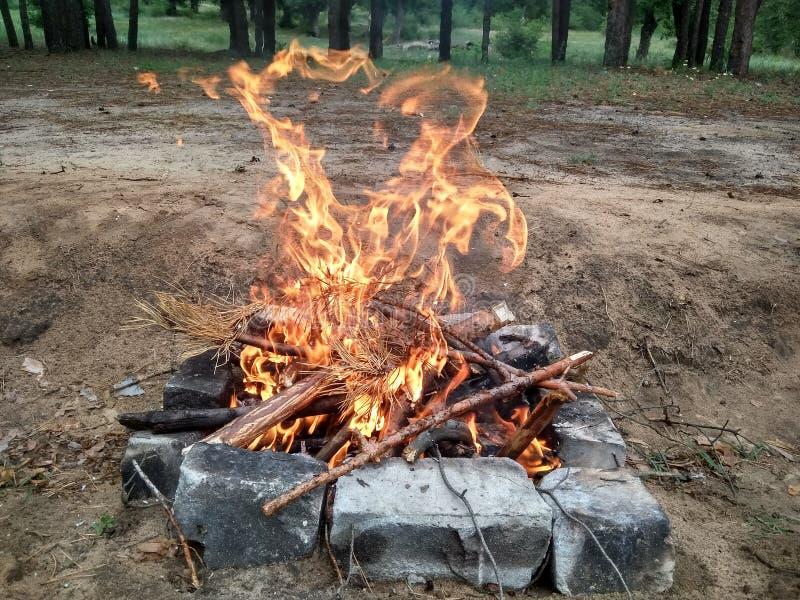 Beeld van brand in een hout, brand voor bbq op stenen, de foto van de kleurenclose-up stock foto