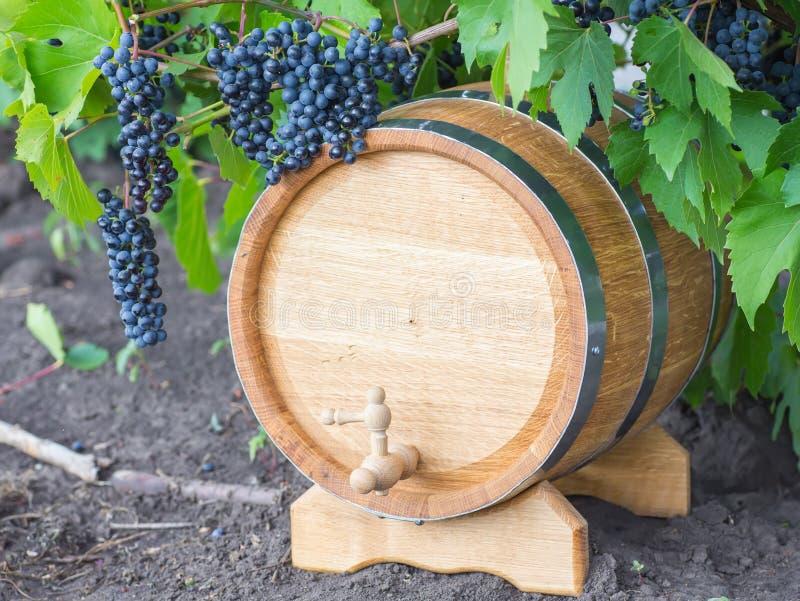 Beeld van druiven op een vat stock foto