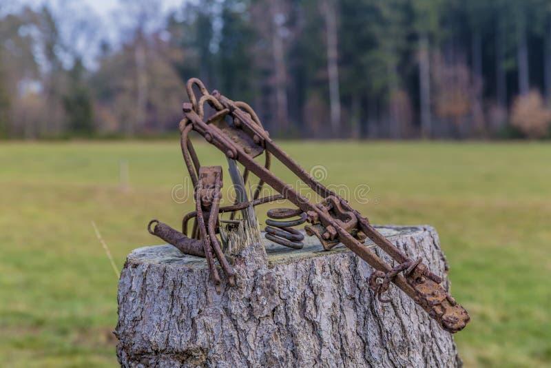 Beeld van een roestige metaalstructuur met abstracte vorm op een boomstomp royalty-vrije stock afbeelding