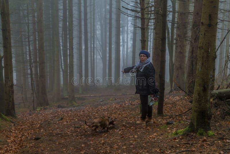 Beeld van een vrouw vragen die of is het de juiste weg in het midden van het bos stock afbeelding