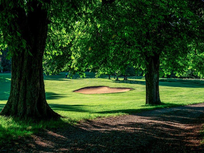 Beeld van golfcursus met bunker en bomen stock afbeelding