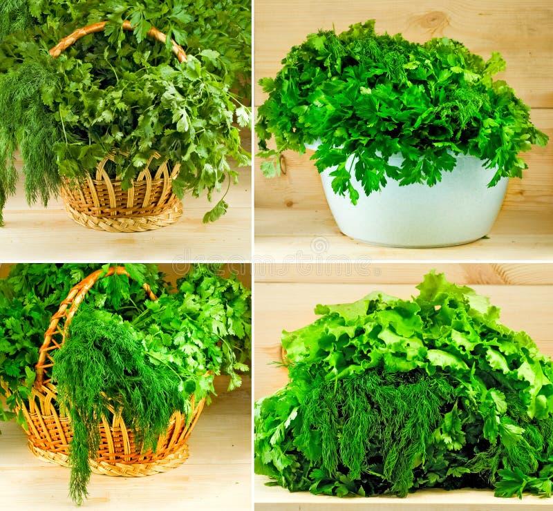 Beeld van groen in een mandclose-up royalty-vrije stock fotografie
