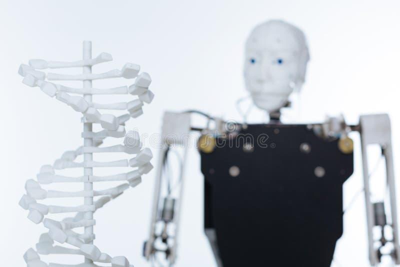 Beeld van het model van menselijke DNA stock afbeelding