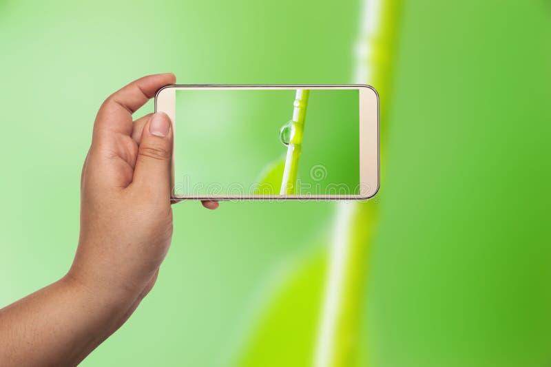 Beeld van het schieten van foto met smartphone stock afbeelding
