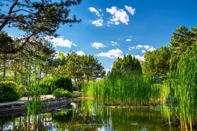 Beeld van Japanse die Tuin op Margit Island van Boedapest, Hongarije tijdens zonnige de zomerdag wordt gevestigd stock foto's