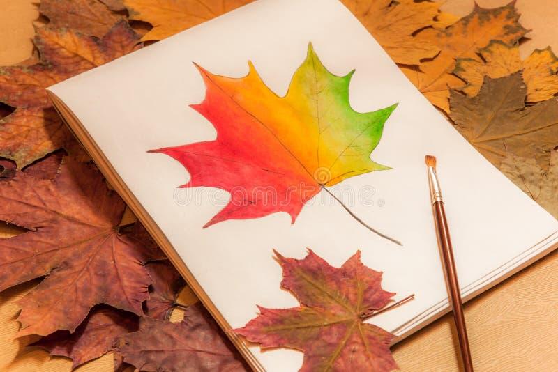 Beeld van kleurrijk esdoornblad royalty-vrije stock foto's