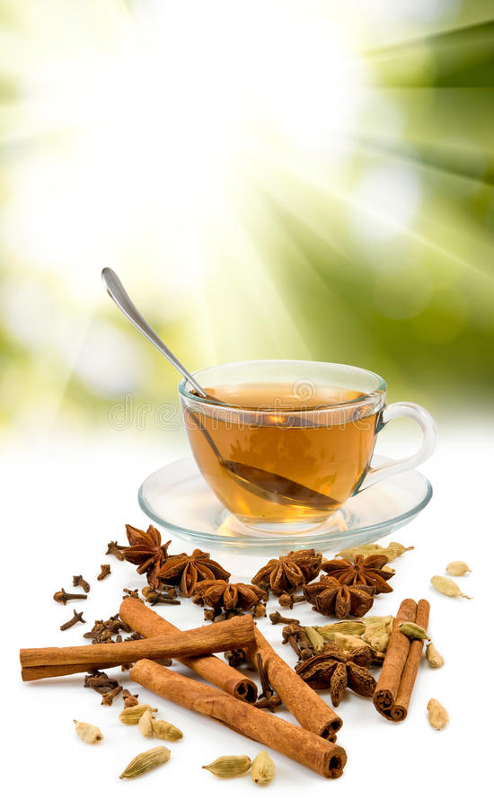Beeld van kop thee en diverse kruidenclose-up stock afbeeldingen