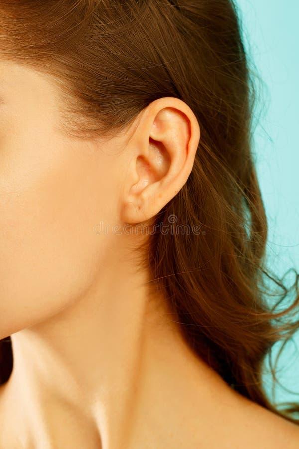 Beeld van oor dichte omhooggaand stock foto's