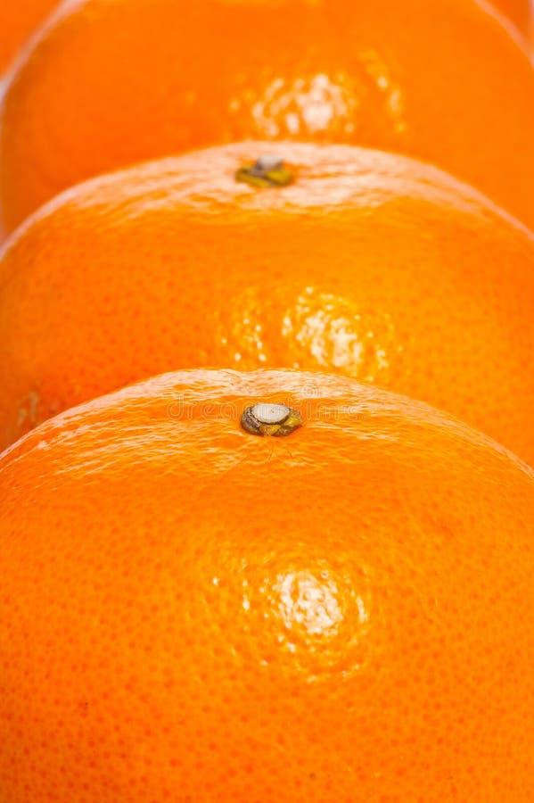 Beeld van oranje vruchten royalty-vrije stock fotografie