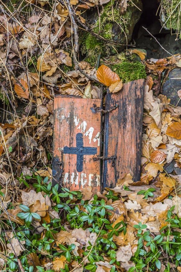 Beeld van twee kleine houten stukken die op installaties, droog bladeren en mos liggen stock afbeelding