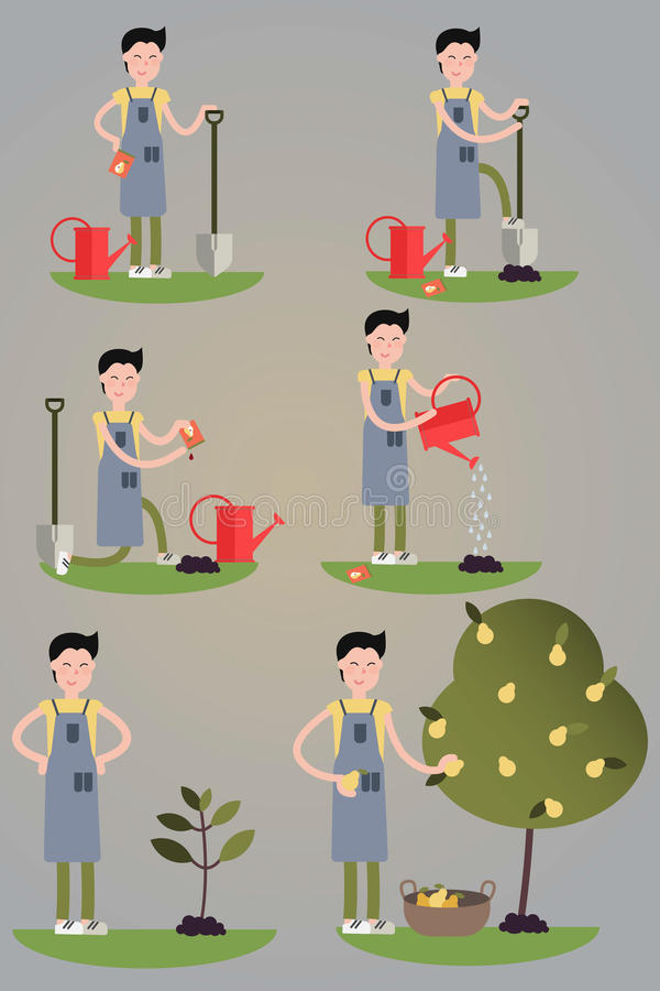 Beeldenreeks van het beeldverhaalkarakter Milieuactiviteiten Het planten van boomproces van zaad aan vruchten Geïsoleerde stock illustratie