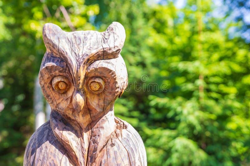 Beeldhouwwerk van houten uilen in het park royalty-vrije stock afbeelding