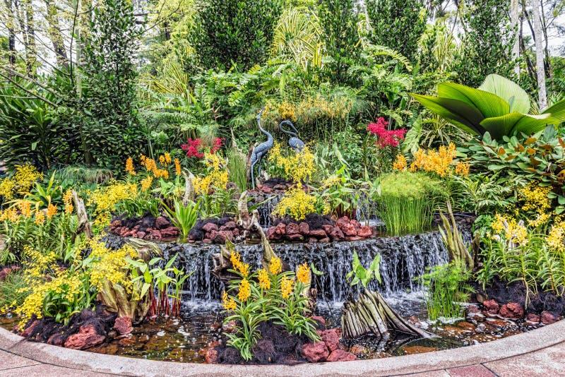 Beeldhouwwerk van kranen in de Nationale Orchideetuin, gevestigde withi stock afbeeldingen