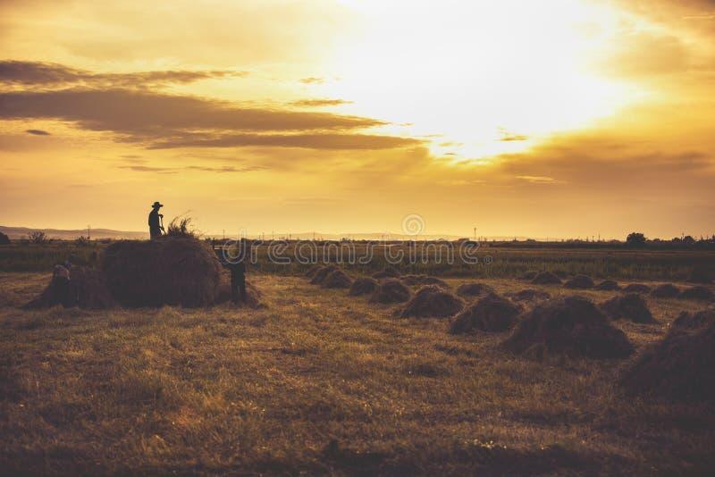 beeldsilhouetten van landbouwers het werken royalty-vrije stock foto