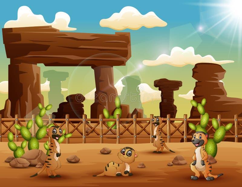 Beeldverhaal Meerkats die op de woestijn genieten van vector illustratie