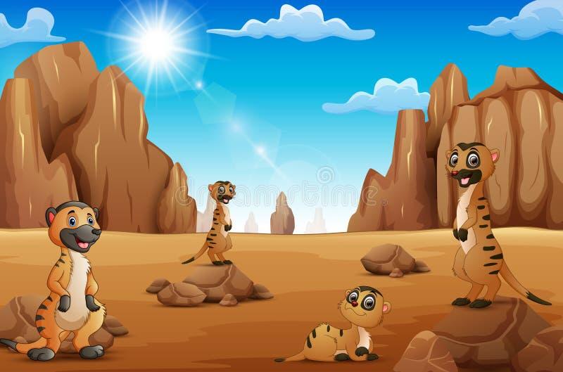 Beeldverhaal Meerkats die zich in de woestijn bevinden royalty-vrije illustratie