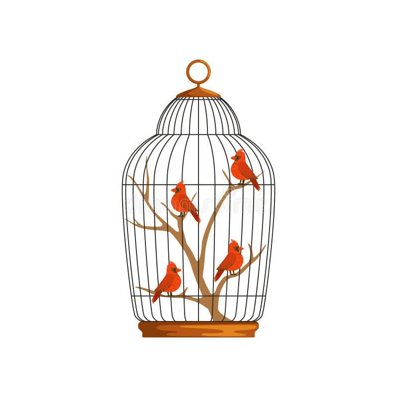 Beeldverhaal noordelijke kardinalen die op houten tak in cel zitten Vogels met helder rood gevederte Koe en stier kleurrijk vector illustratie
