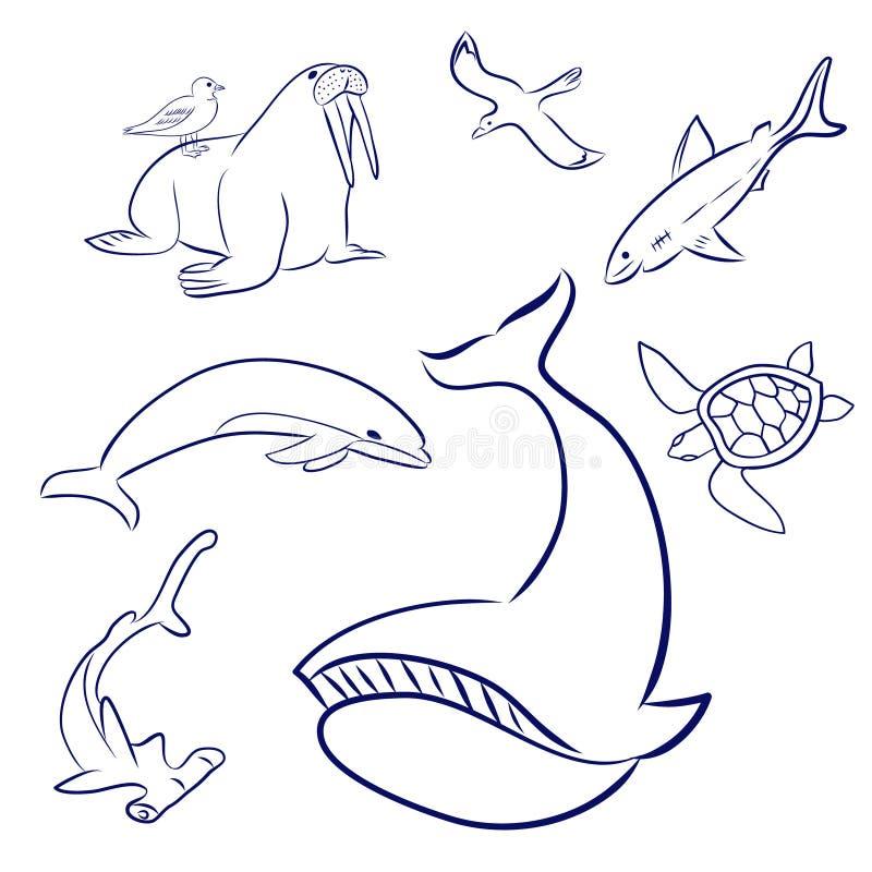 Beeldverhaal overzeese geplaatste Dieren De walvis, schildpad, dolfijn, meeuw, hammerhead vist, haai, walrus Hand Getrokken krabb vector illustratie