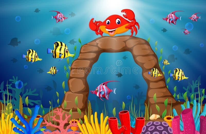 Beeldverhaal tropische krab met mooie onderwaterwereld vector illustratie