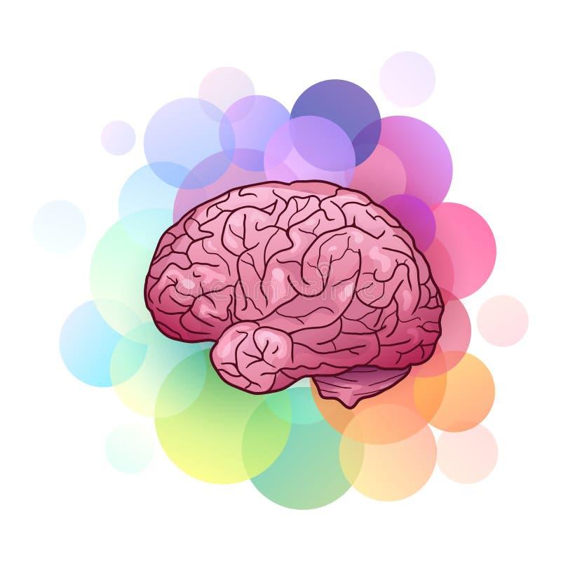 Beeldverhaalillustratie van menselijke hersenen met hoogtepunten en schaduwen met kleurrijke cirkels creativiteit en inspiratie stock illustratie