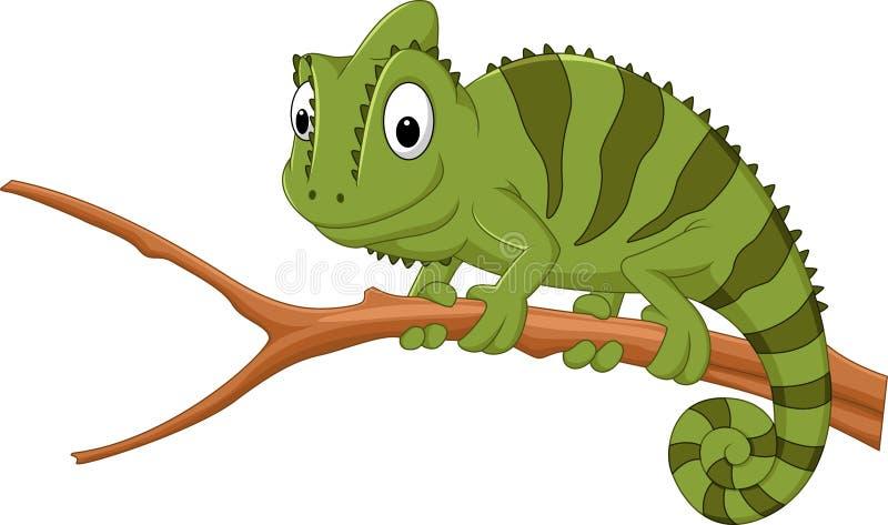 Beeldverhaalkameleon op een tak stock illustratie