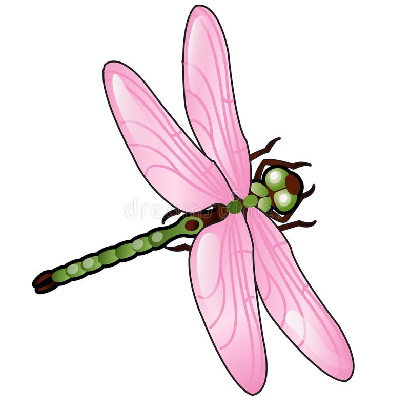Beeldverhaallibel met roze die vleugels op witte achtergrond worden geïsoleerd Vector illustratie royalty-vrije illustratie