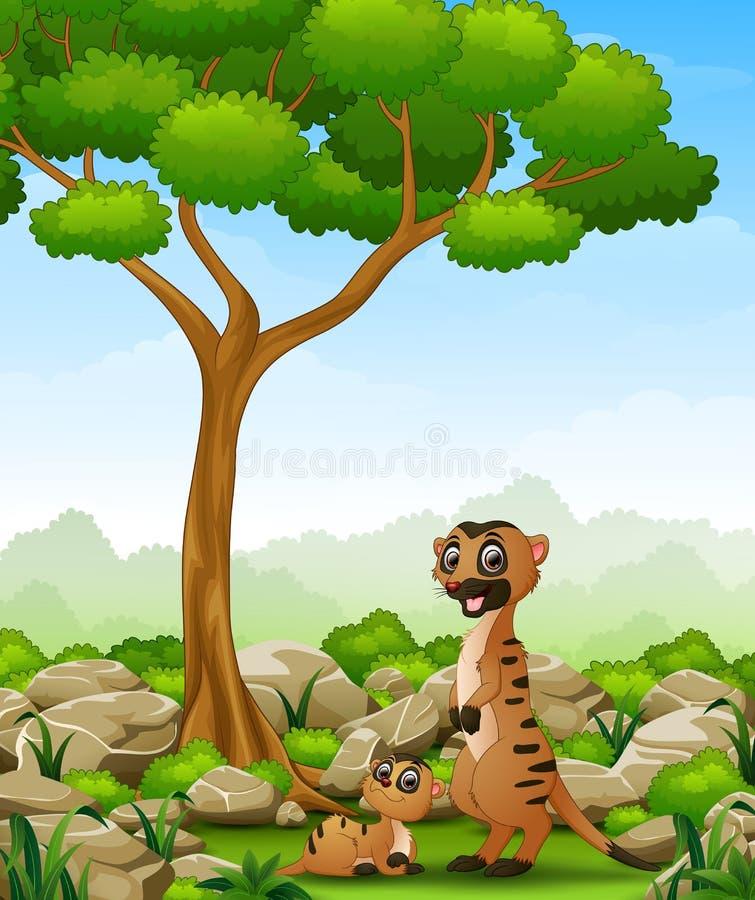 Beeldverhaalmoeder meerkat met haar weinig baby in de wildernis stock illustratie