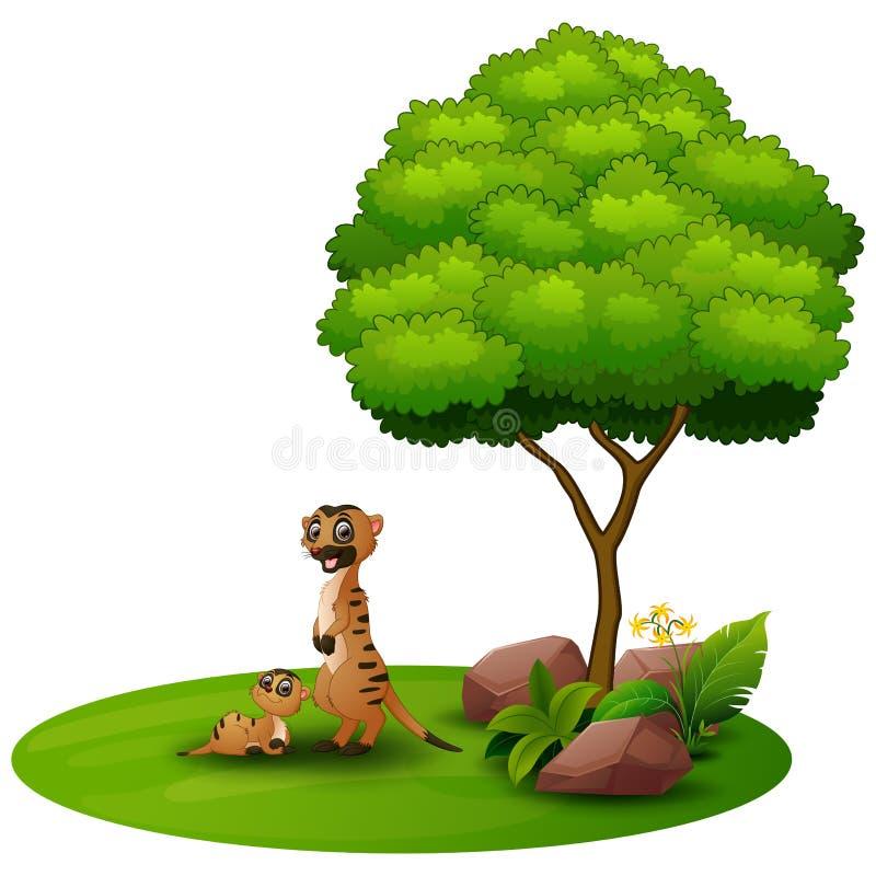 Beeldverhaalmoeder meerkat met haar weinig baby onder een boom op een witte achtergrond vector illustratie