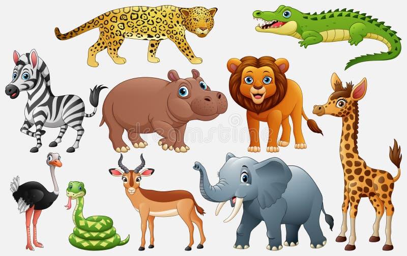 Beeldverhaalwilde dieren op witte achtergrond vector illustratie
