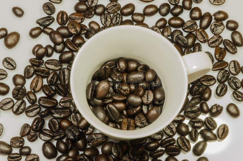 Beens arrostiti briciolo della tazza di caffè fotografie stock libere da diritti