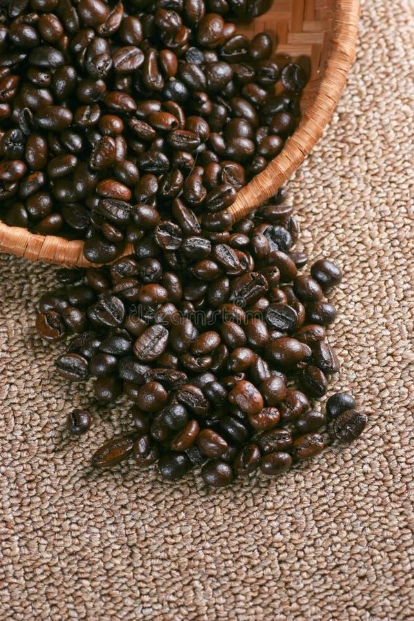 Beens del caffè fotografia stock libera da diritti