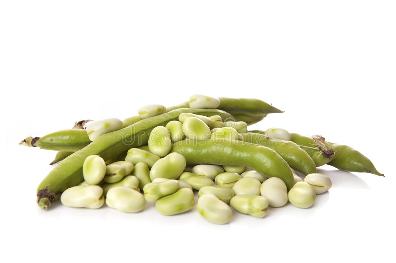 Beens grand photo stock