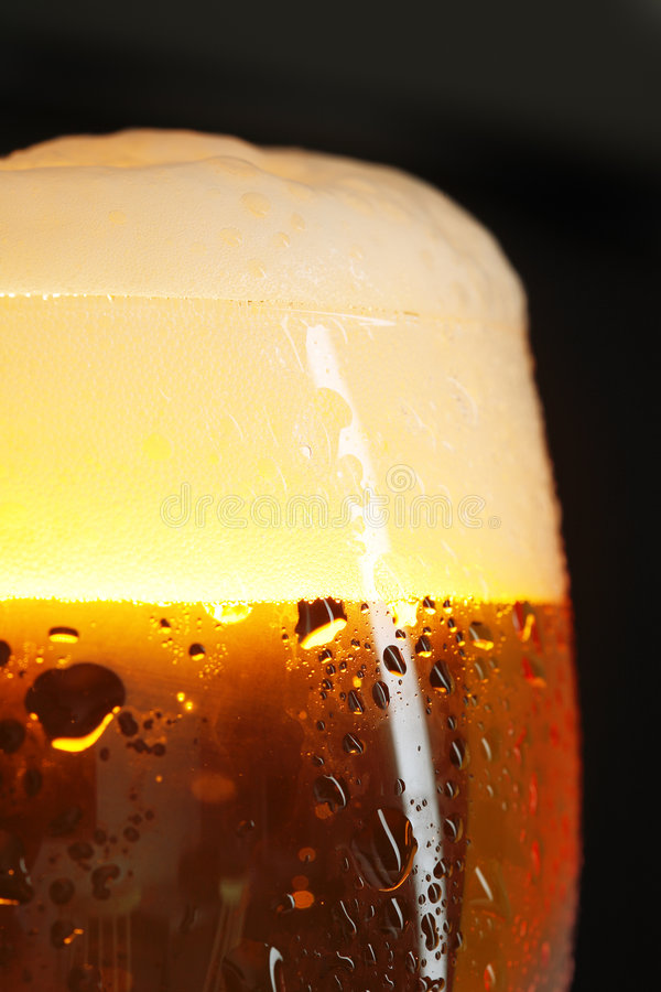 Free Beer Royalty Free Stock Photography - 1010647