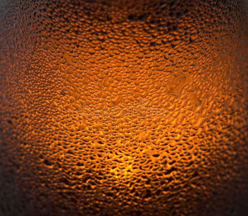 beer στοκ εικόνες