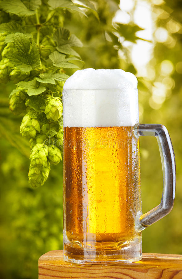 Free Beer Royalty Free Stock Photos - 16080368