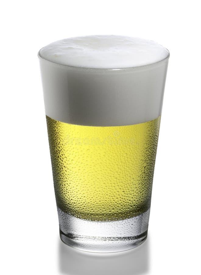 Beer. Isolated sweety glass of beer stock image