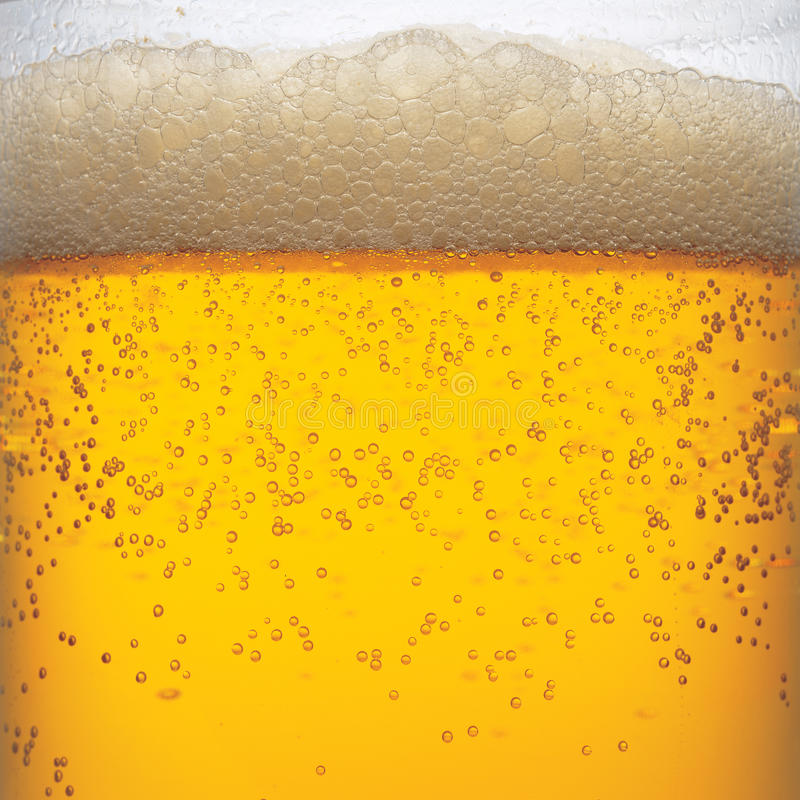 Free Beer Royalty Free Stock Photography - 20251977