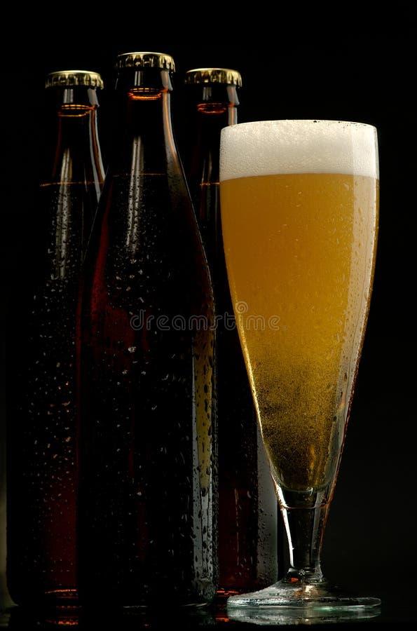 Download Beer stock image. Image of drink, beer, bottle, brown - 9478129