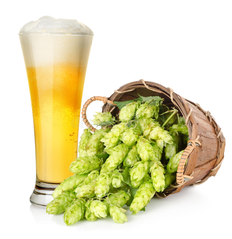 Free Beer And Hop In Basket Stock Images - 27819904